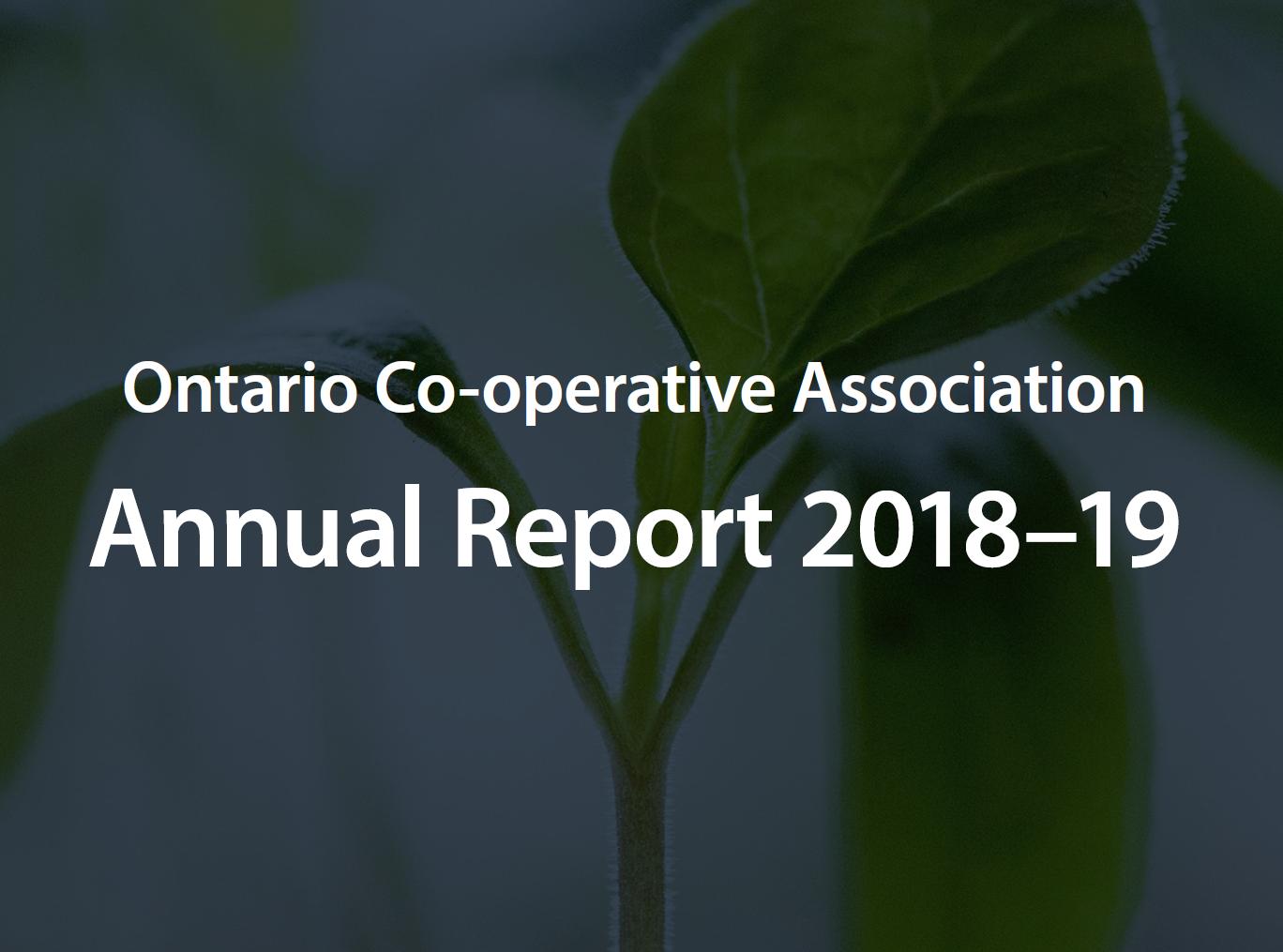 OCA Annual Report 2018-19