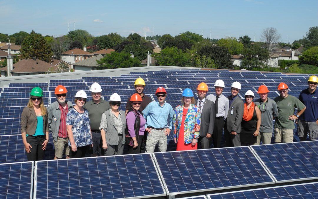 The Renewable Energy Co-operative